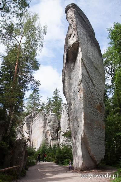 Czeskie safari i Skalne Miasto 20140725T105531_MG_2066