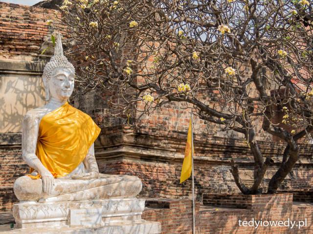 Ayutthaya 20160217T105138IMG_7351