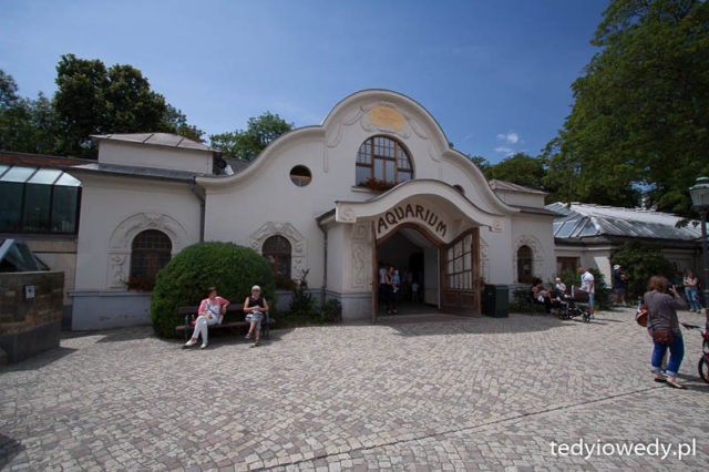 Zoo w Lipsku 20150711T130636_MG_4928