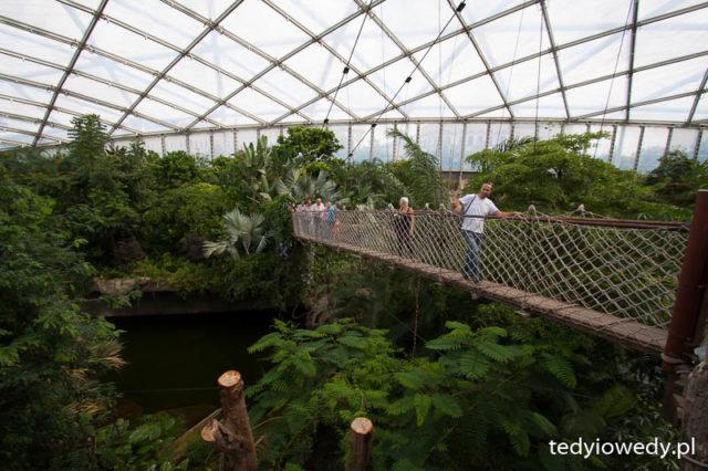 Zoo w Lipsku 20150711T141333_MG_5039