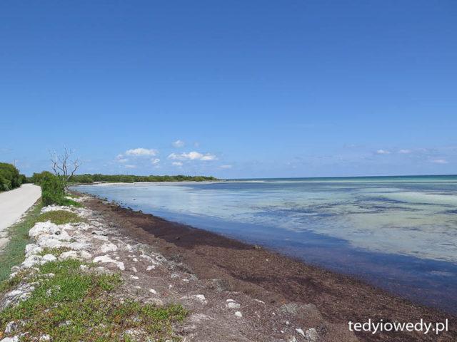 Florida Keys 20150501t214429img_7826