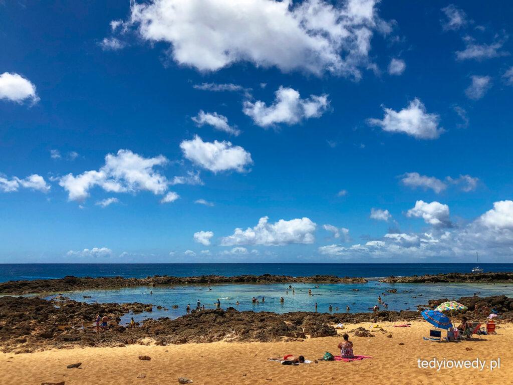 plażowanie na Oahu