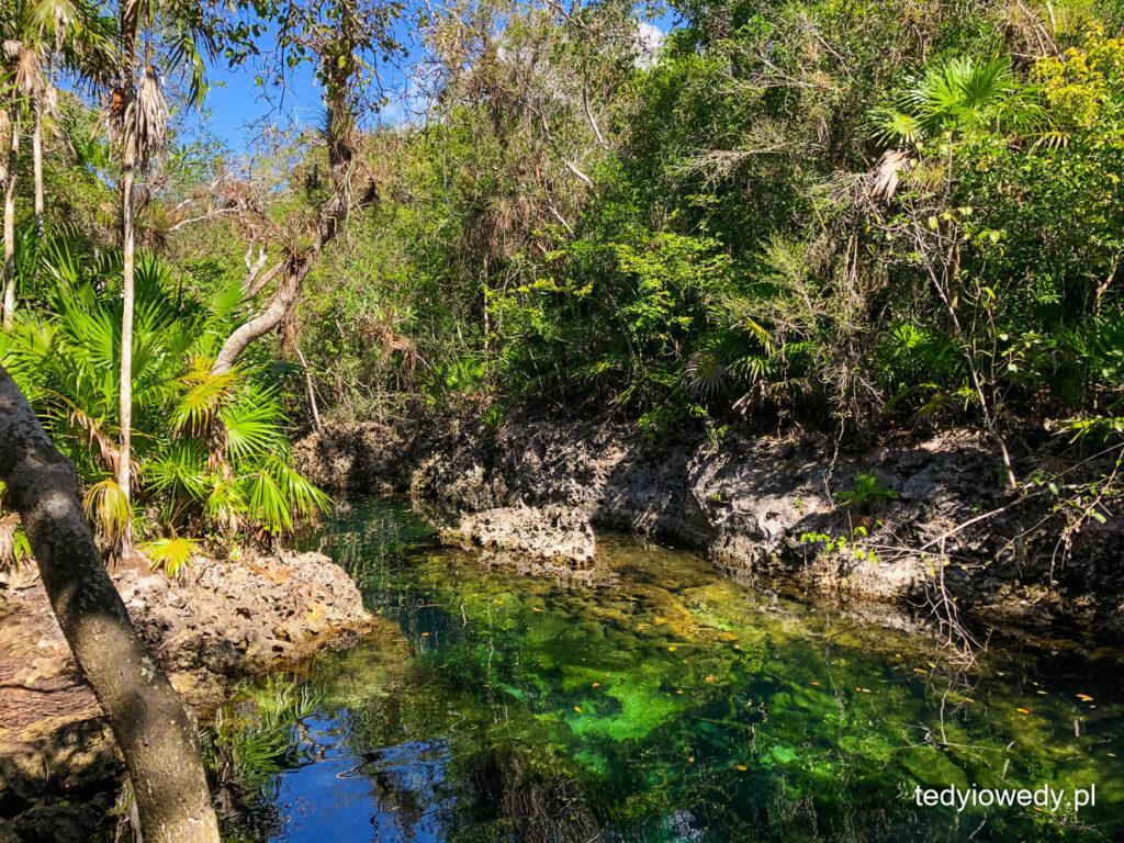 Półwysep Zapata